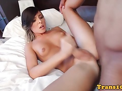 tgirl   hard-on in apartment